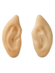Pointed Flesh Ears