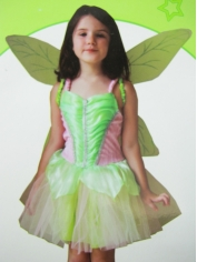 Green Fairy - Children Book Week Costumes