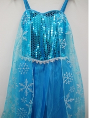 Blue Ice Princess - Children Book week Costumes