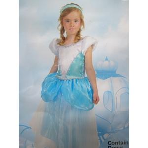 Cinderella - Children Book Week Costumes