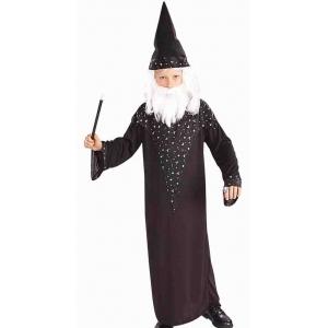 Wizard - Children Book Week Costumes