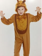 Lion - Book Week Costumes