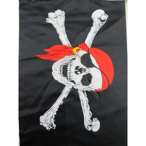 Large Pirate Flag