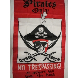 Large Red Pirate Flag