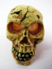 Small Skull - Halloween Decorations