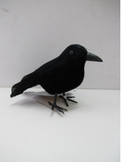 Black Crow - Halloween Decorations