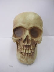 Large Skull - Halloween Decorations