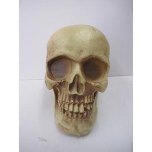 Large Skull - Halloween Decorations