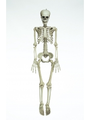 Skeleton Large - Halloween Decorations