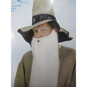 Extra Long White Beard