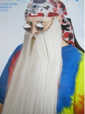 Extra Long Grey Beard