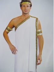 Caesar - Adult Mens Costume