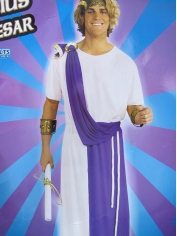 Julius Caesar - Adult Mens Costume
