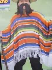 Bright Mexican Poncho Adult Costume