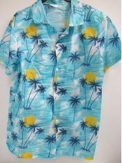 Men's Hawaiian Shirt Green - Men's Costumes