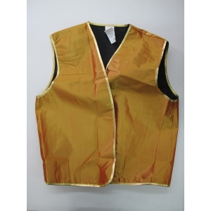 Gold Genie Vest - Bollywood Costumes