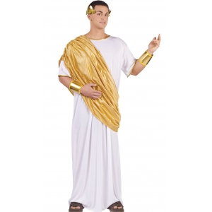 Hail Caesar - Adult Mens Costume