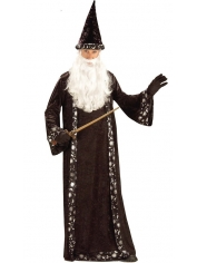Wizard - Halloween Mens Costume