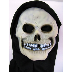 Skull Hooded Mask