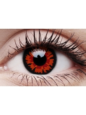 Volturi - One Day Colored Crazy Contact Lenses
