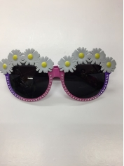 Daisy with Pink Frame - Novelty Glasses