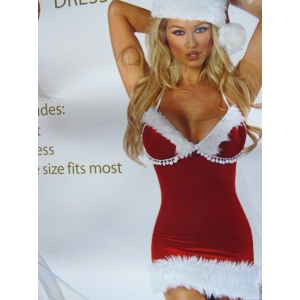 Sexy Santa Dress - Christmas Costumes