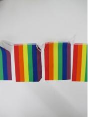 Rainbow Bunting Flag - Mardi Gras Decorations