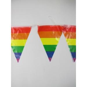 Rainbow Pennant Banner Flag