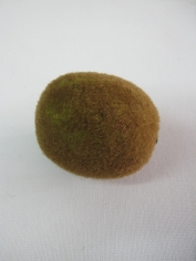 Kiwi - Fake Fruit