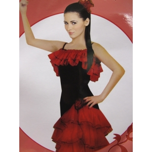 Spanish Dance Costume - Women Costumes