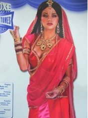 Bollywood Beauty - Womens Costumes