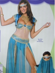 Blue Princess - Womens Costume