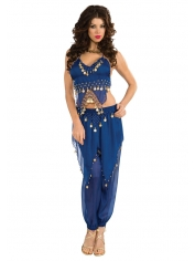 Blue Belly Dancing -  Womens Costume