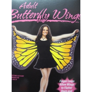 Yellow Adult Butterfly Wing