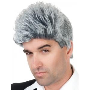 Mens Gray Wig